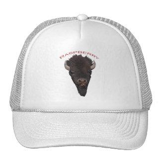 Bison Raspberry Mesh Hats