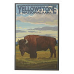 Bison Scene - Yellowstone National Park Wood Print