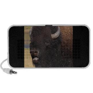 bison singing mp3 speakers
