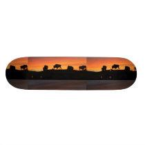 Bison Skateboard Deck