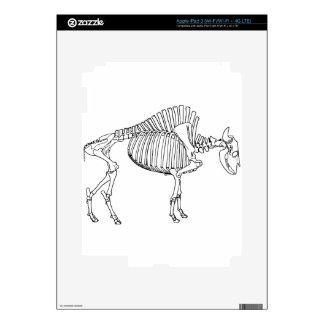 Bison Skeleton iPad 3 Skin