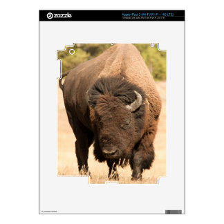 Bison Skin For iPad 3