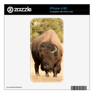 Bison Skin For The iPhone 4