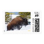 Bison Snow Jump ... Postage