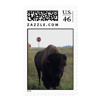 Bison Stop Postage
