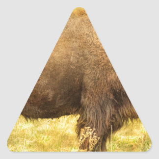 Bison Triangle Sticker