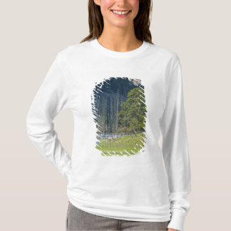 Bison with calf at Yellowstone National Park T-Shirt