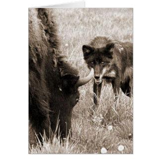 Bisonte agresivo de la caza del lobo tarjeta pequeña