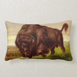 Bisonte americano almohadas