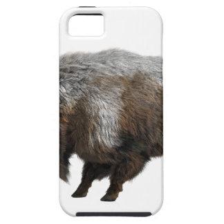 Bisonte americano en invierno funda para iPhone SE/5/5s