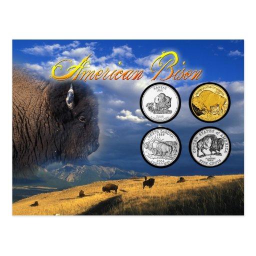 Bisonte americano en monedas tarjetas postales