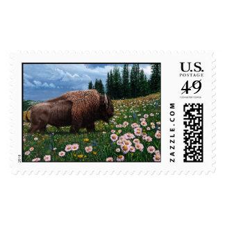 """Bisonte americano - """"ningún tiempo para las flores franqueo"""
