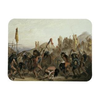 Bisonte-Danza de los indios de Mandan delante del  Imanes Rectangulares