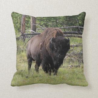 Bisonte de la foto de Yellowstone Cojín
