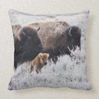 Bisonte de la vaca y del becerro, Yellowstone Cojín