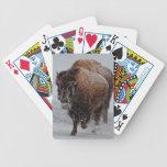 Bisonte de Yellowstone Baraja De Cartas