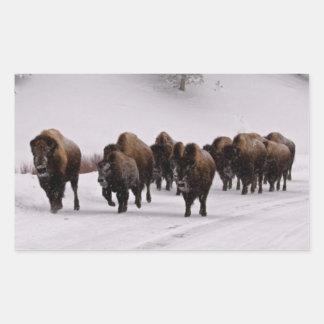 Bisonte en invierno pegatina rectangular