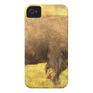 Bisonte Case-Mate iPhone 4 Cobertura
