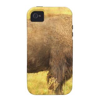 Bisonte Case-Mate iPhone 4 Fundas