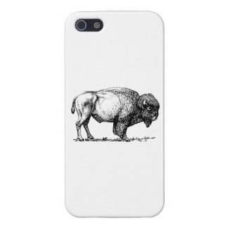 Bisonte iPhone 5 Protectores