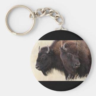 bisonte llavero