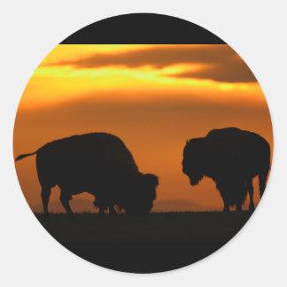 bisonte pegatina