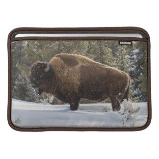 Bisonte que se coloca en nieve fundas macbook air