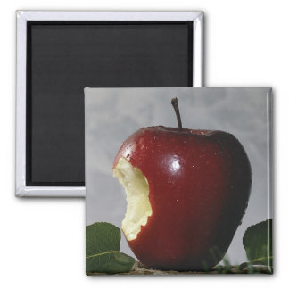 Bitten Red Apple 2 Inch Square Magnet