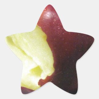 Bitten Red Apple Star Sticker
