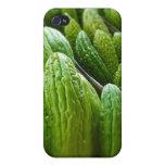 Bitter Melon Cucumber City Market Kansas City iPhone 4 Case