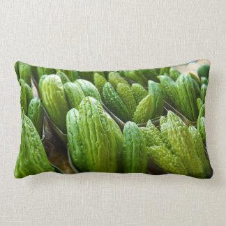 Bitter Melon Cucumber City Market Kansas City Throw Pillows