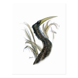bittern bird, tony fernandes postcard