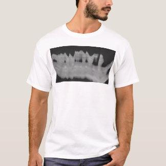 bittersweet 1 T-Shirt