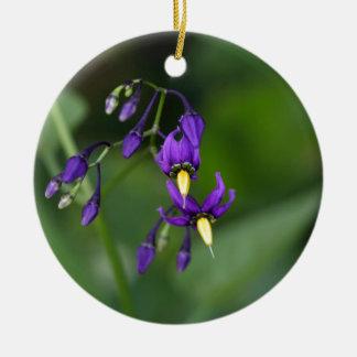Bittersweet nightshade (Solanum dulcamara) Ceramic Ornament