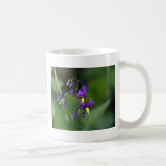 Bittersweet nightshade (Solanum dulcamara) Coffee Mug