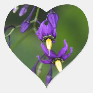 Bittersweet nightshade (Solanum dulcamara) Heart Sticker