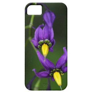 Bittersweet nightshade (Solanum dulcamara) iPhone SE/5/5s Case
