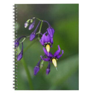 Bittersweet nightshade (Solanum dulcamara) Notebook