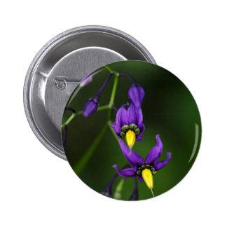 Bittersweet nightshade (Solanum dulcamara) Pinback Button