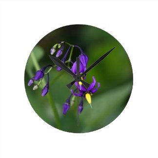 Bittersweet nightshade (Solanum dulcamara) Round Clock