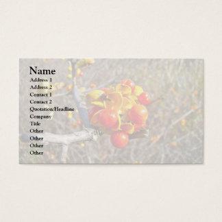 Bittersweet Vine Berries Items Business Card