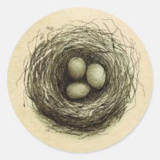 Bitty Bird Nest Classic Round Sticker