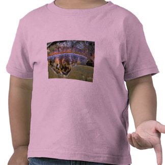Bivalve from Papua, New Guinea Tee Shirt