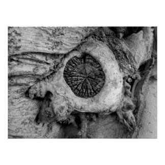 Bizarre tree abstract round shape poster