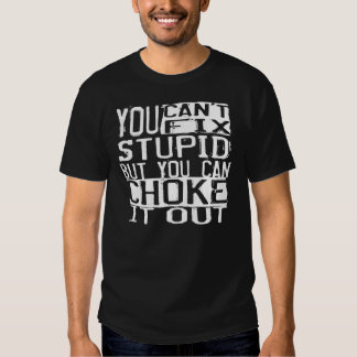 "BJJ ""You can't fix stupid, but you can choke..."" T T-Shirt"