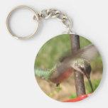BK- llavero del colibrí
