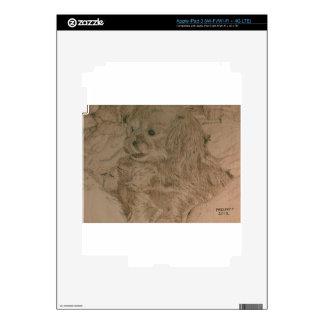 bk wb (15).jpg Cute Little Puppy Skins For iPad 3