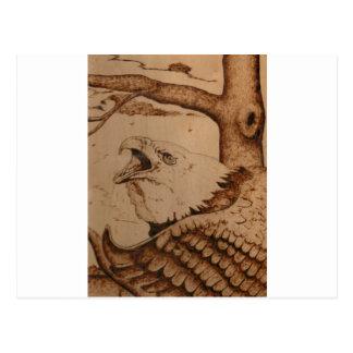 bk wb (1).PNG Eagle Wood Burning Postcard