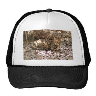 BL013 TRUCKER HAT