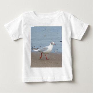 Blach headed gull shirt